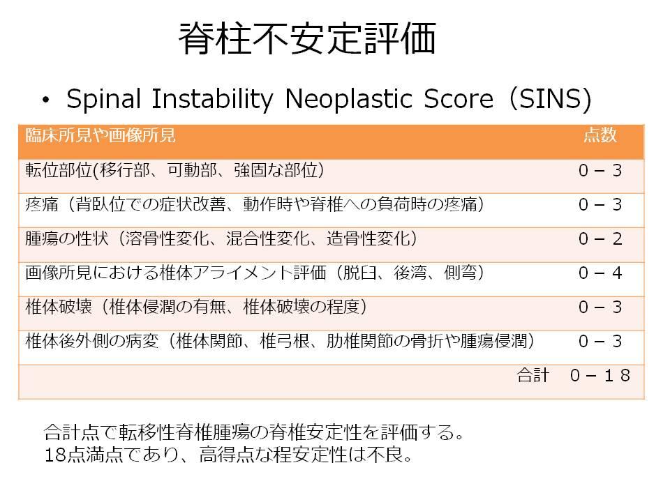 脊柱不安定評価(SINS)