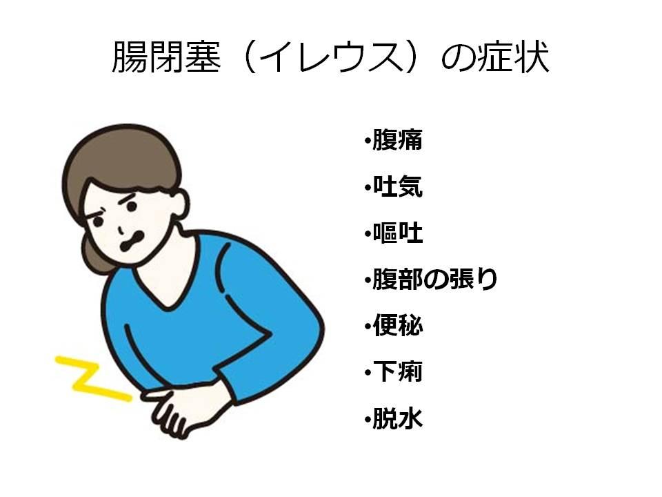 腸閉塞(イレウス)の症状