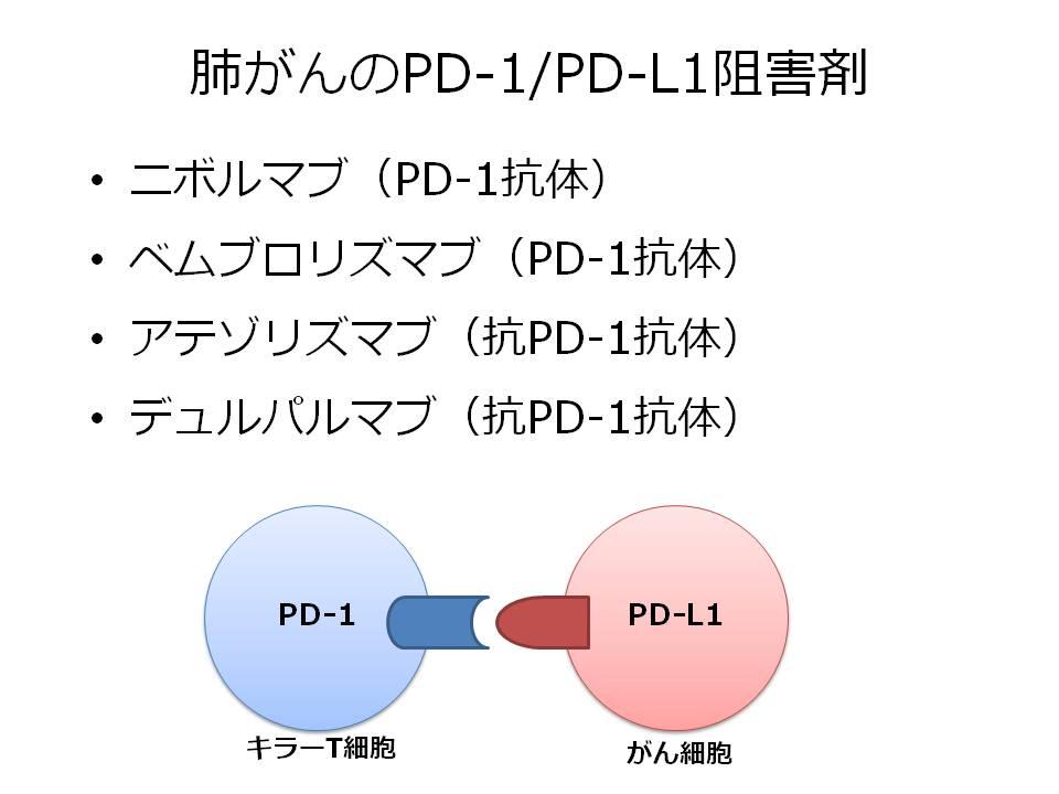肺がんのPD-1/PD-L1阻害薬。ニボルマブ(PD-1抗体) ベムブロリズマブ(PD-1抗体) アテゾリズマブ(抗PD-1抗体) デュルパルマブ(抗PD-1抗体)