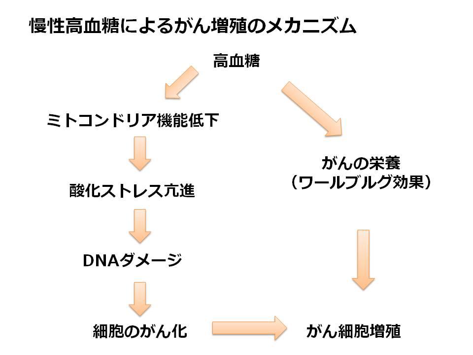 慢性高血糖によるがんのメカニズム