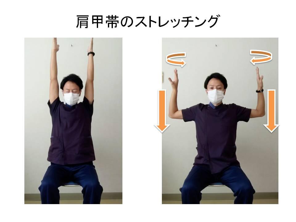 肩甲帯のストレッチング