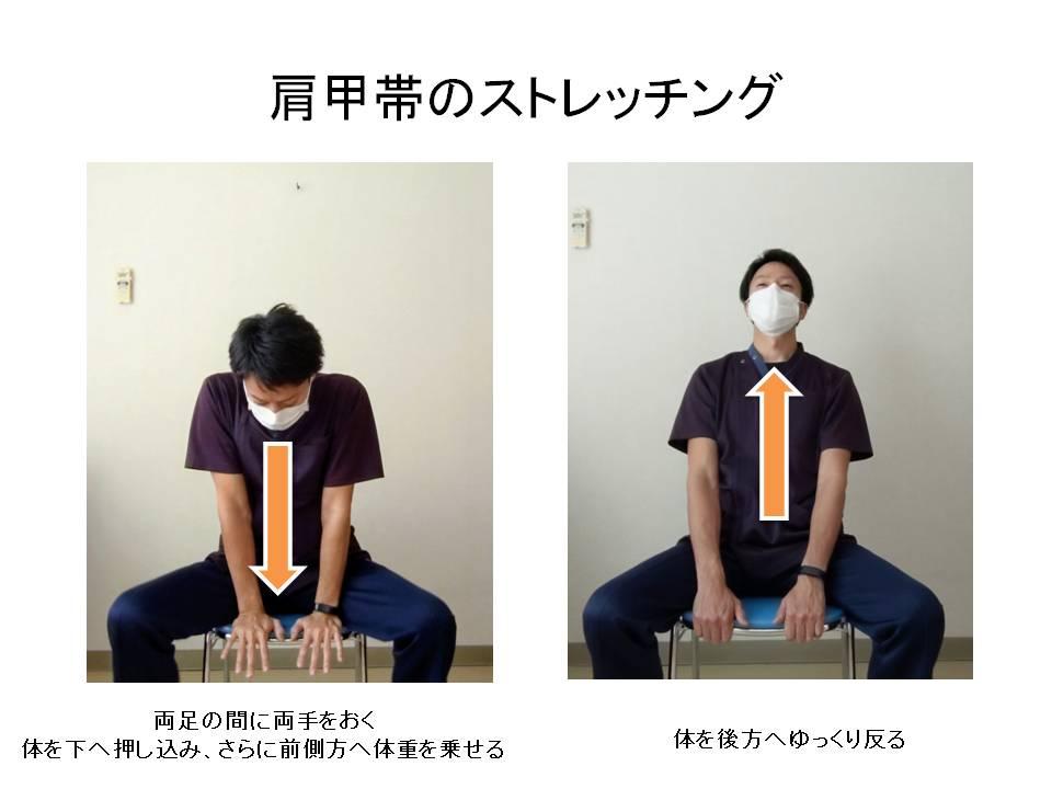 椅子を利用した肩甲帯のストレッチング