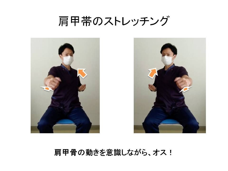 肩甲骨の運動・オス!